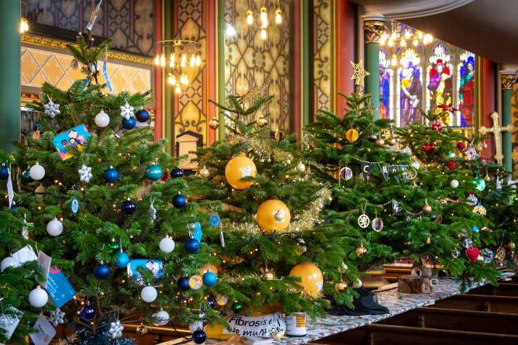 Row of Christmas trees